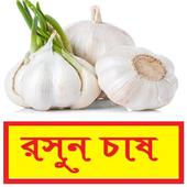 সঠিকভাবে রসুন চাষ পদ্ধতি ~ Garlic Cultivation icon