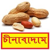 সঠিকভাবে চীনাবাদাম চাষ ~ Groundnut Cultivation icon