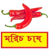 সঠিকভাবে মরিচ চাষ পদ্ধতি ~ Pepper Cultivation icon