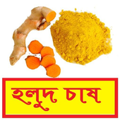 সঠিকভাবে হলুদ চাষ পদ্ধতি ~Yellow spice Cultivation icon