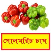সঠিকভাবে গোলমরিচ চাষ পদ্ধতি ~ Pepper Cultivation icon