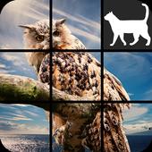 Animal Slide Puzzle icon