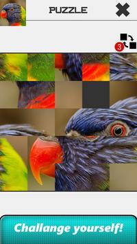 Animal Slide Puzzle screenshot 11