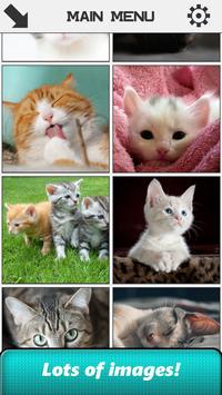 Cat Slide Puzzle apk screenshot