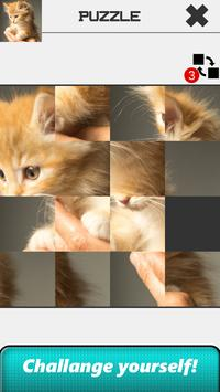 Cat Slide Puzzle screenshot 3