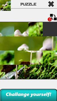 Nature Slide Puzzle apk screenshot