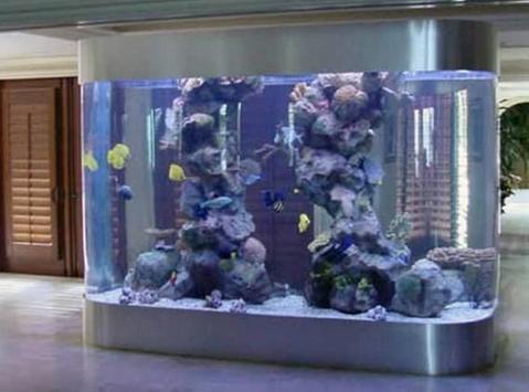 fish aquarium design ideas apk screenshot - Freshwater Aquarium Design Ideas