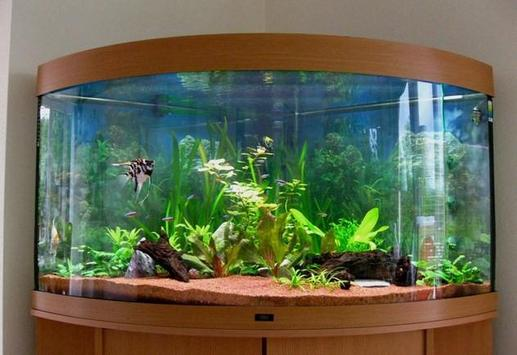 Fish Aquarium Design Ideas APK Download - Free Lifestyle APP for ...