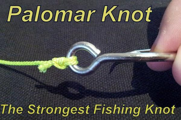 Easy Fishing Knot Tutorials for Android - APK Download