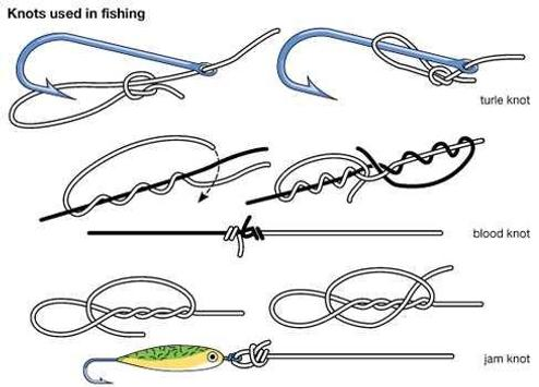 Fishing knots apk download free lifestyle app for for Types of fishing knots
