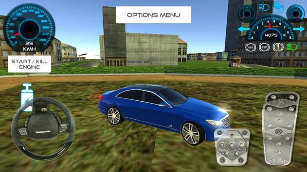 First Class Car Driving screenshot 8