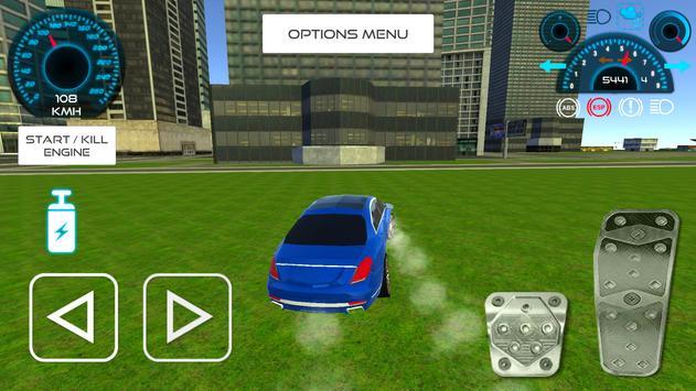First Class Car Driving screenshot 9