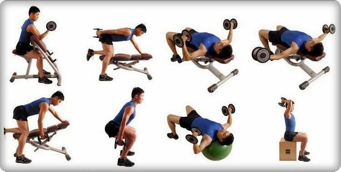 Fitness Training Tutorial screenshot 3