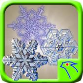Snow Lock Puzzle icon