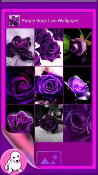Purple Rose Live Wallpaper apk screenshot
