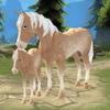 Paraíso dos Cavalos - A Fazenda dos Sonhos ícone
