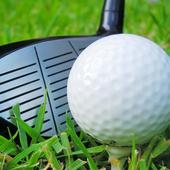 Holo Golf icon