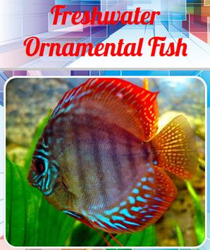 Freshwater Ornamental Fish apk screenshot