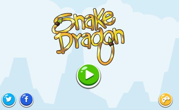Snake  Dragon poster