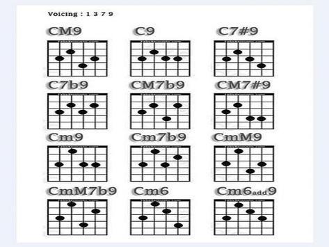 Guitar Learning for Beginner screenshot 2