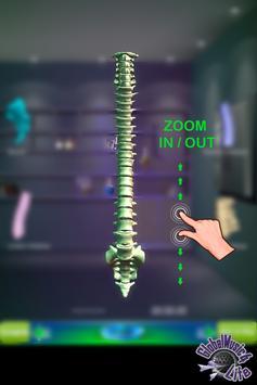 GM4L Spine Bone Game screenshot 7