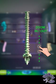 GM4L Spine Bone Game screenshot 4