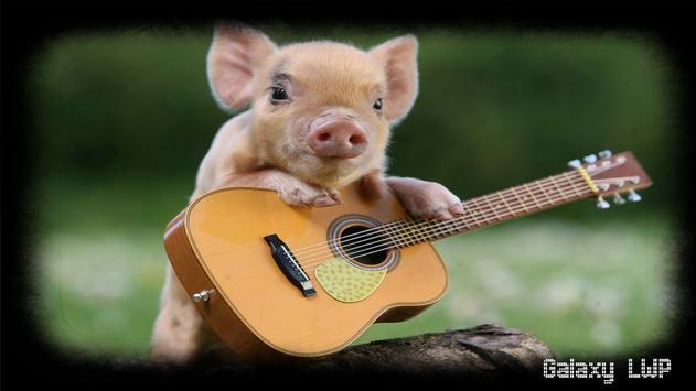 Little Pig Wallpaper screenshot 1
