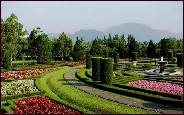 Gambar Taman Bunga Indah For Android Apk Download