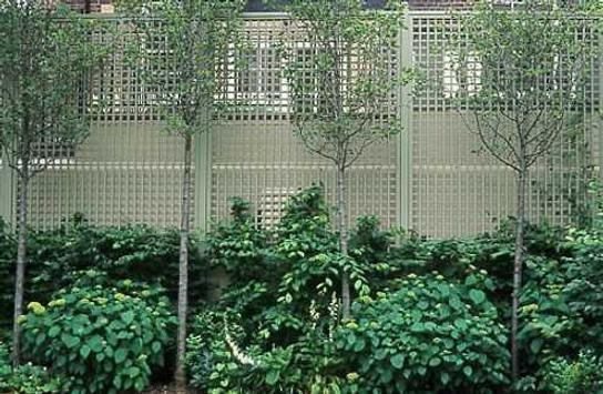 garden screening design ideas apk download - free lifestyle app, Garten ideen