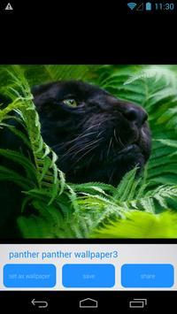 Panther HD Wallpapers screenshot 4