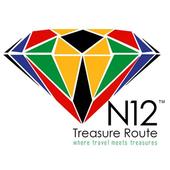 N12 Treasure App icon