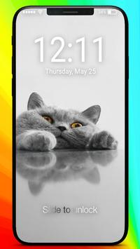 The British Shorthair Kawaii Kitten Lock Screen poster