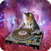Cat Space Live Wallpaper icon