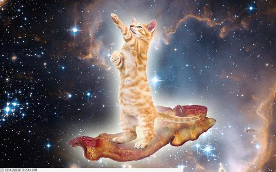 Cat Space Live Wallpaper apk screenshot