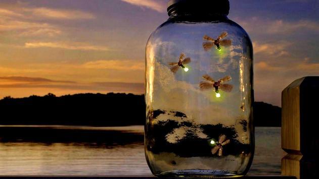 Fireflies Live Wallpaper poster