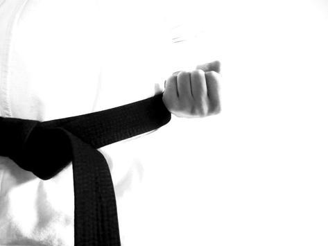 Karate Live Wallpaper apk screenshot