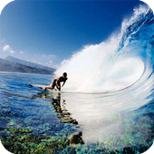 Surfing Live Wallpaper icon