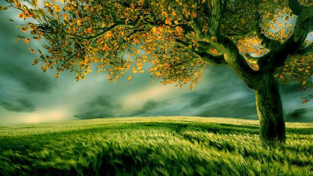 Tree Live Wallpaper apk screenshot