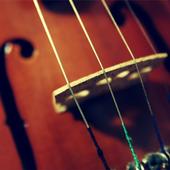 Violin Live Wallpaper icon