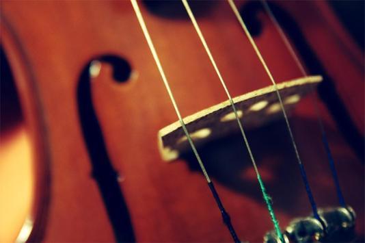 Violin Live Wallpaper poster