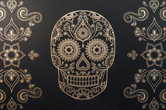 Skull Mexican Live Wallpaper apk screenshot