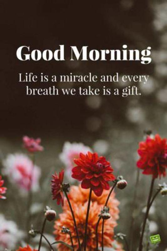 Good Morning Images Stories Status Quotes Gif For Android Apk Download