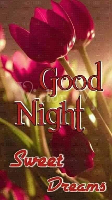 Good Night Romantic Love Gif for Android - APK Download