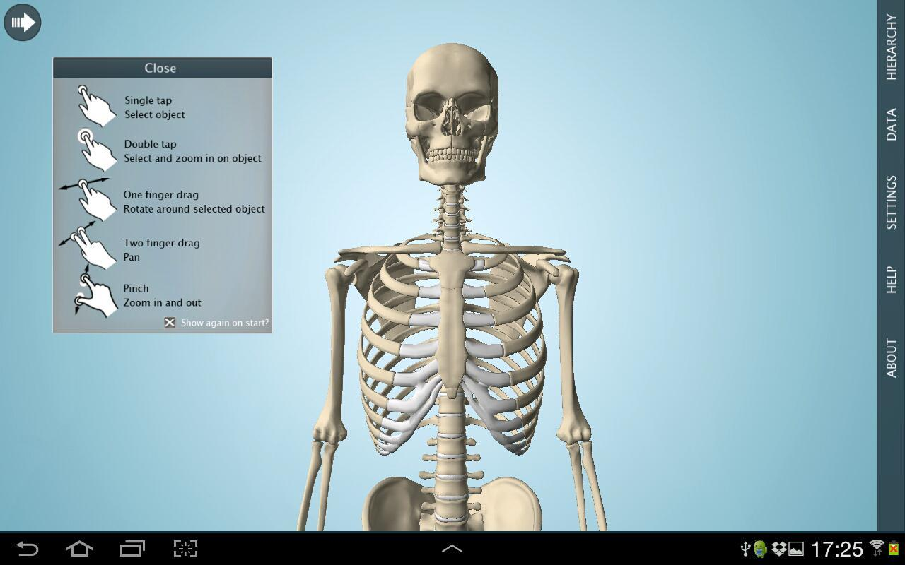 Anatomy 3D - Anatronica APK Download - Free Medical APP for Android ...
