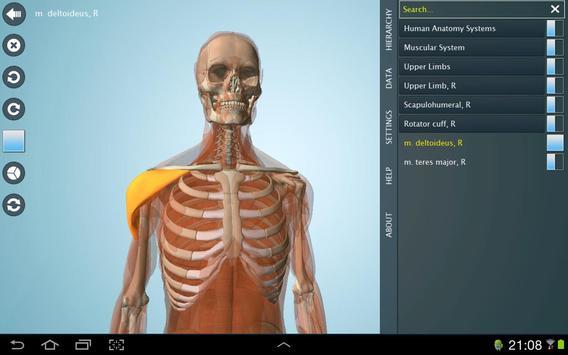 Anatomy 3D - Anatronica Descarga APK - Gratis Medicina Aplicación ...