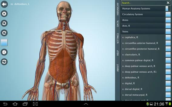 Anatomy 3d Anatronica Apk Download Free Medical App For Android