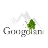 Googolan icon