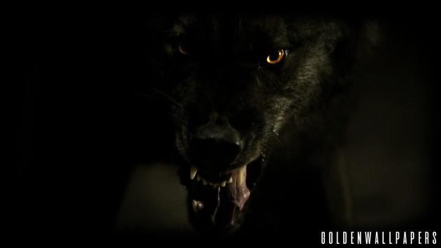Black Wolf Wallpaper screenshot 3