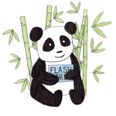 Panda Flash Card icon