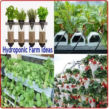 Hydroponic Farming Ideas poster